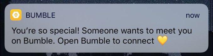 bumble yooo.jpeg
